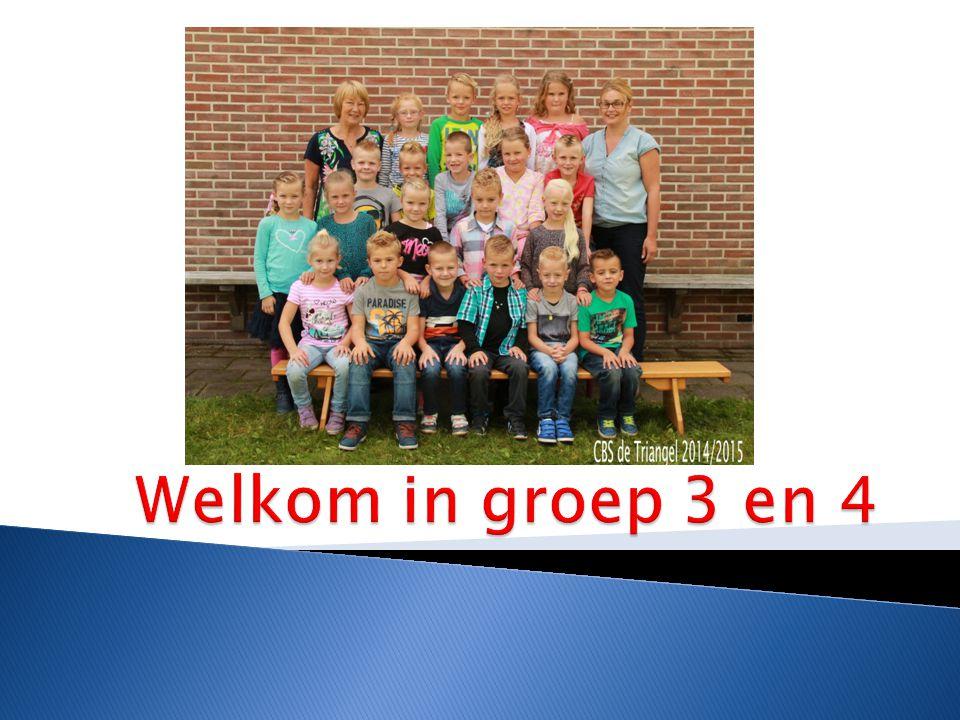 Geschiedenis/aardrijkskunde  Huisje boompje beestje  Creatieve vorming  Verkeer  Muziek  Gym
