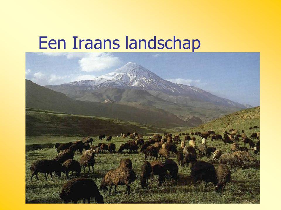 Een Iraans landschap