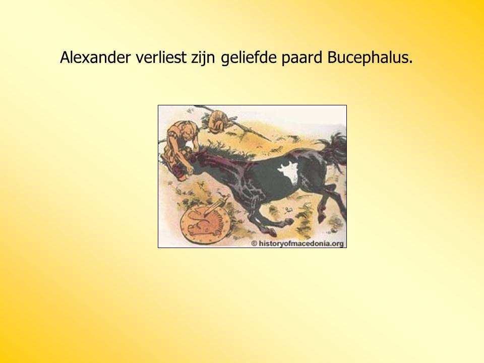 Alexander verliest zijn geliefde paard Bucephalus.