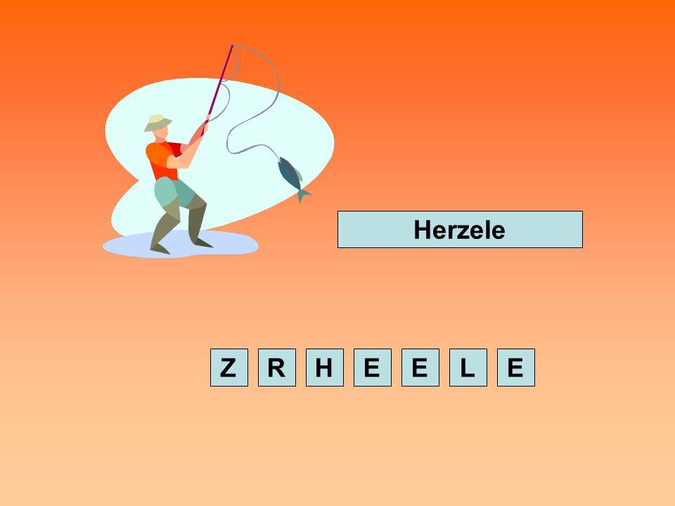 Snelheidstest Vorm het woord opnieuw door op de letters in de juiste volgorde aan te klikken met de muis.
