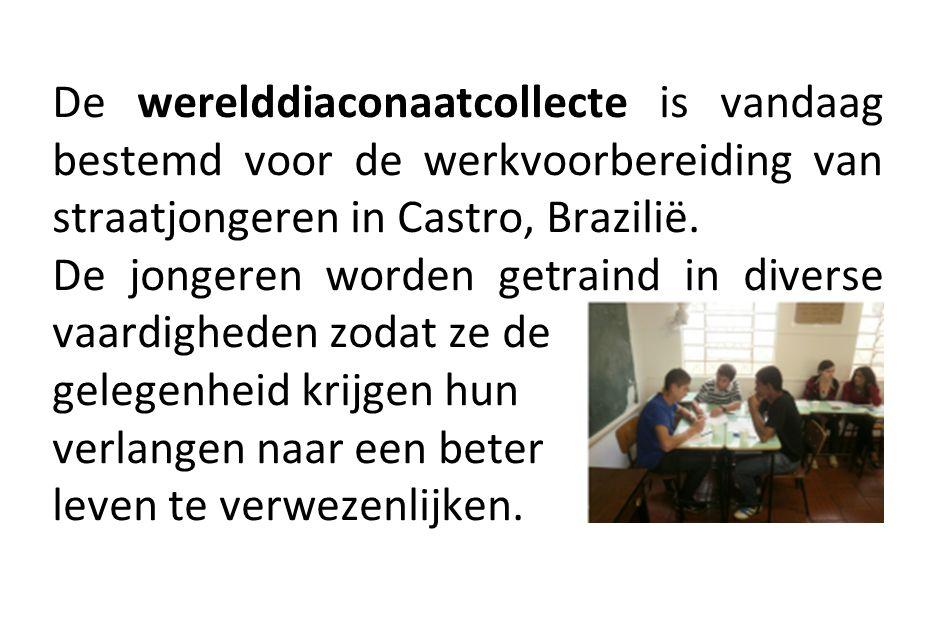 De werelddiaconaatcollecte is vandaag bestemd voor de werkvoorbereiding van straatjongeren in Castro, Brazilië. De jongeren worden getraind in diverse