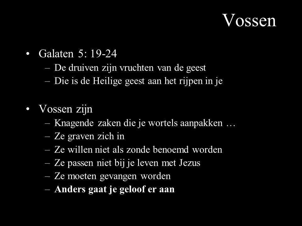 Vossen Galaten 5: 19-24 –De druiven zijn vruchten van de geest –Die is de Heilige geest aan het rijpen in je Vossen zijn –Knagende zaken die je wortel