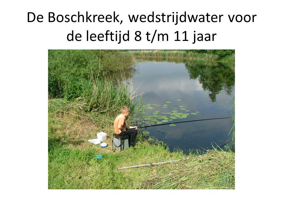 De Boschkreek, wedstrijdwater voor de leeftijd 8 t/m 11 jaar