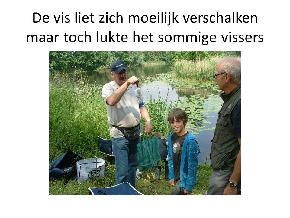 De vis liet zich moeilijk verschalken maar toch lukte het sommige vissers