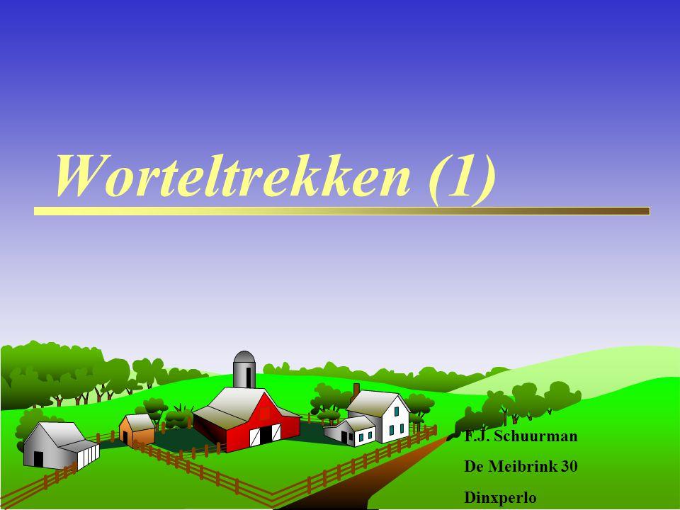 Worteltrekken (1) F.J. Schuurman De Meibrink 30 Dinxperlo