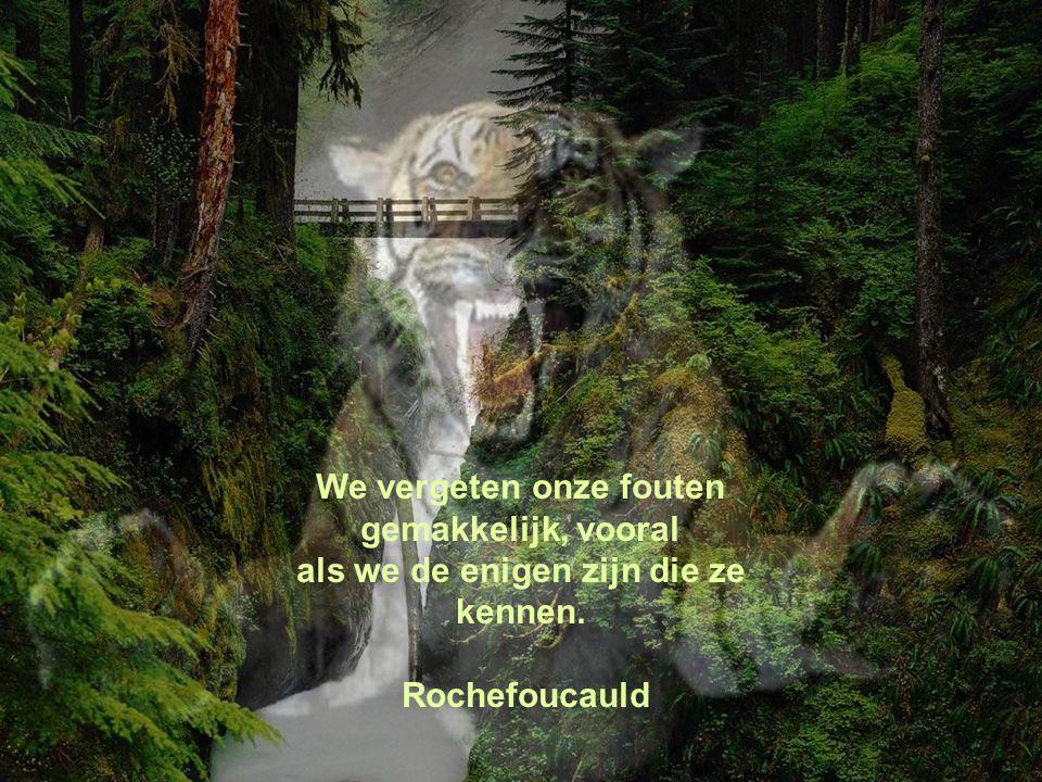 Wij verwijten anderen enkel de fouten waar wij geen profijt van hebben. A.Dumas