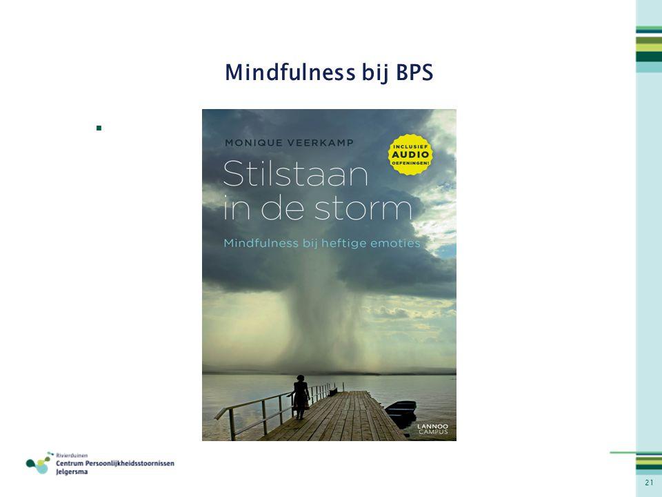 21 Mindfulness bij BPS 