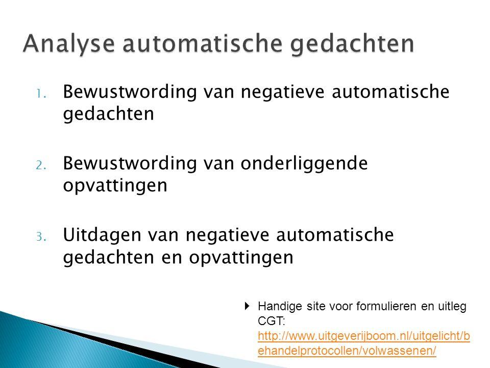 1. Bewustwording van negatieve automatische gedachten 2. Bewustwording van onderliggende opvattingen 3. Uitdagen van negatieve automatische gedachten