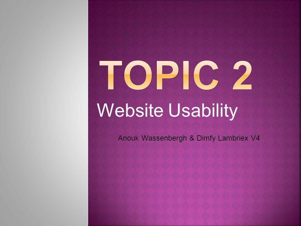 Website Usability Anouk Wassenbergh & Dimfy Lambriex V4