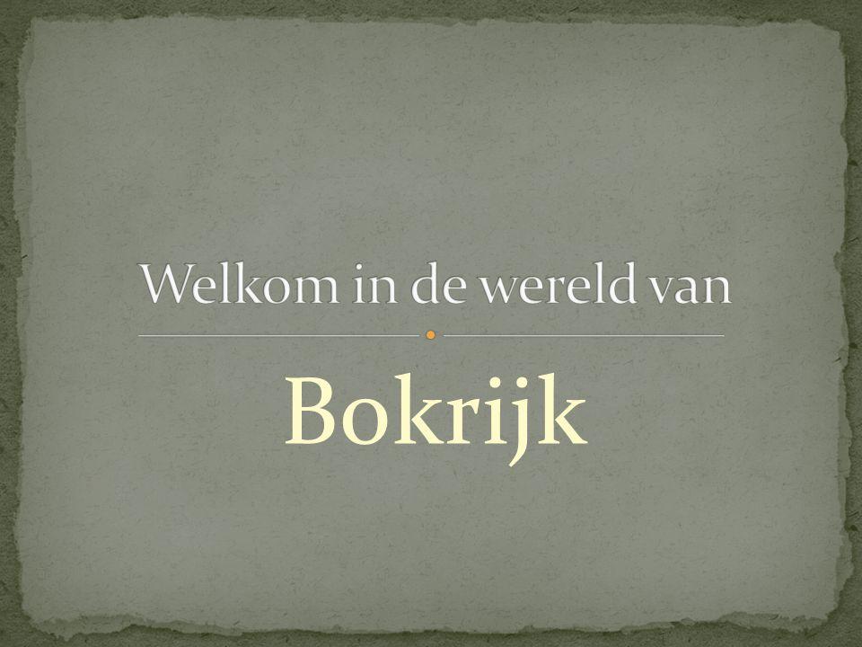 De huidige naam Bokrijk komt van de middeleeuwse naam Buksenrake.
