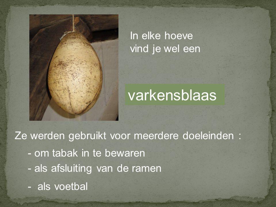 varkensblaas In elke hoeve vind je wel een Ze werden gebruikt voor meerdere doeleinden : - om tabak in te bewaren - als afsluiting van de ramen - als voetbal