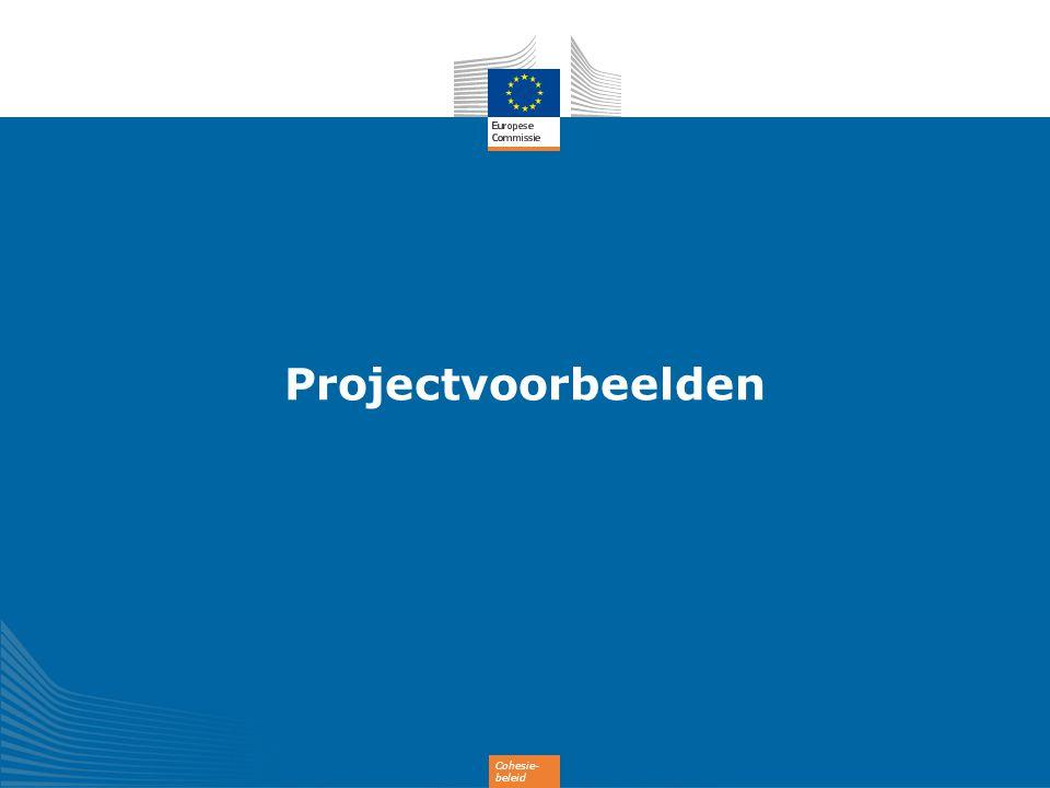 Cohesie- beleid Projectvoorbeelden