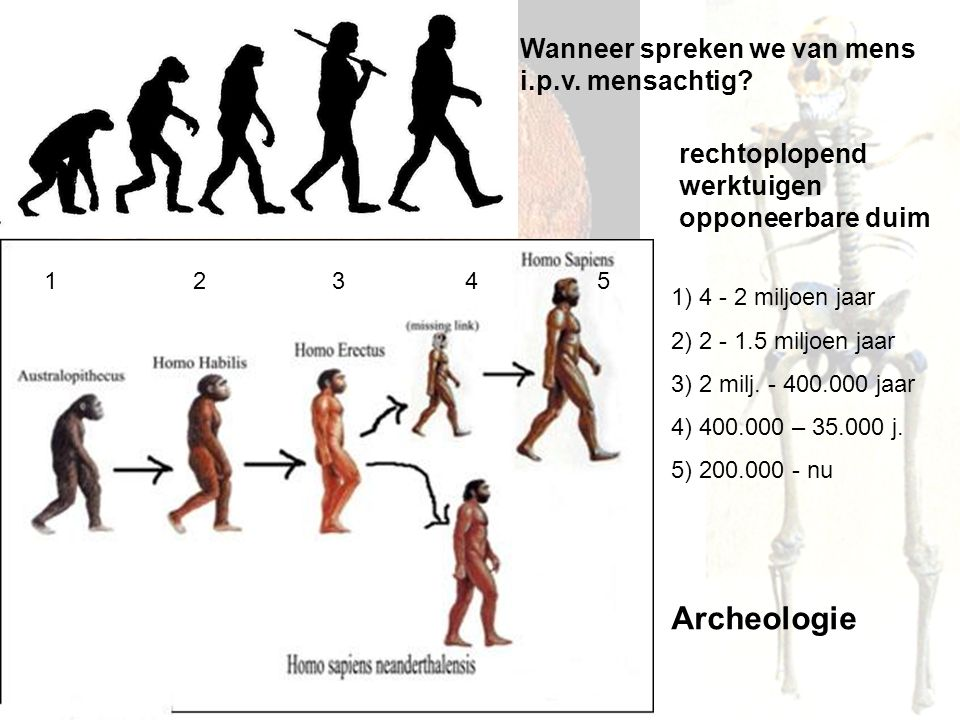 Paragraaf 4 De landbouwrevolutie 10.000 v.C.