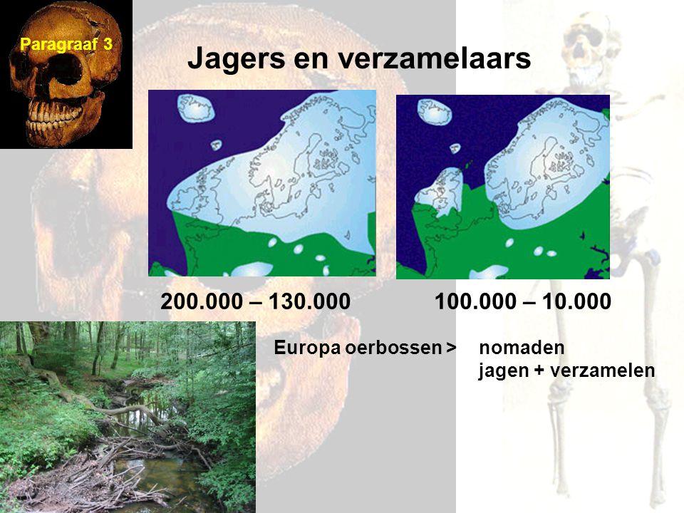 Nederlandkust > moeras en duin oosten/zuiden > bos nomaden taakverdeling