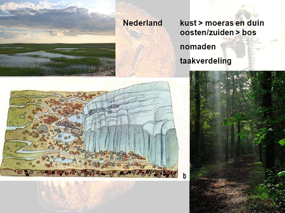 Nederland:5000 v.C.