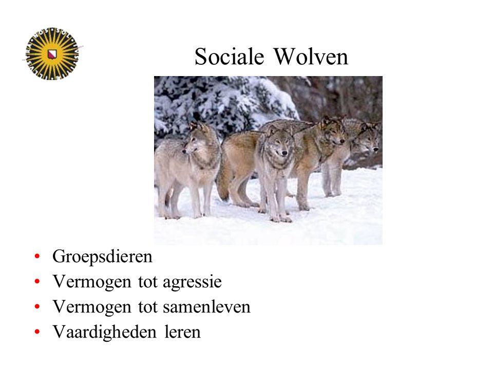 Sociale Wolven Groepsdieren Vermogen tot agressie Vermogen tot samenleven Vaardigheden leren