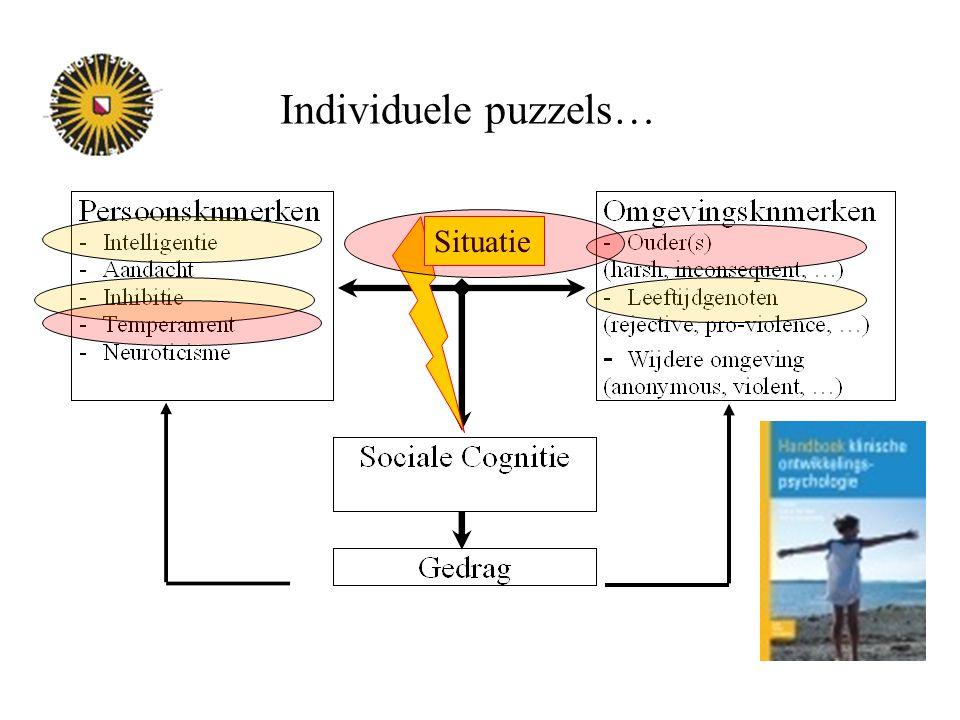Individuele puzzels… Situatie