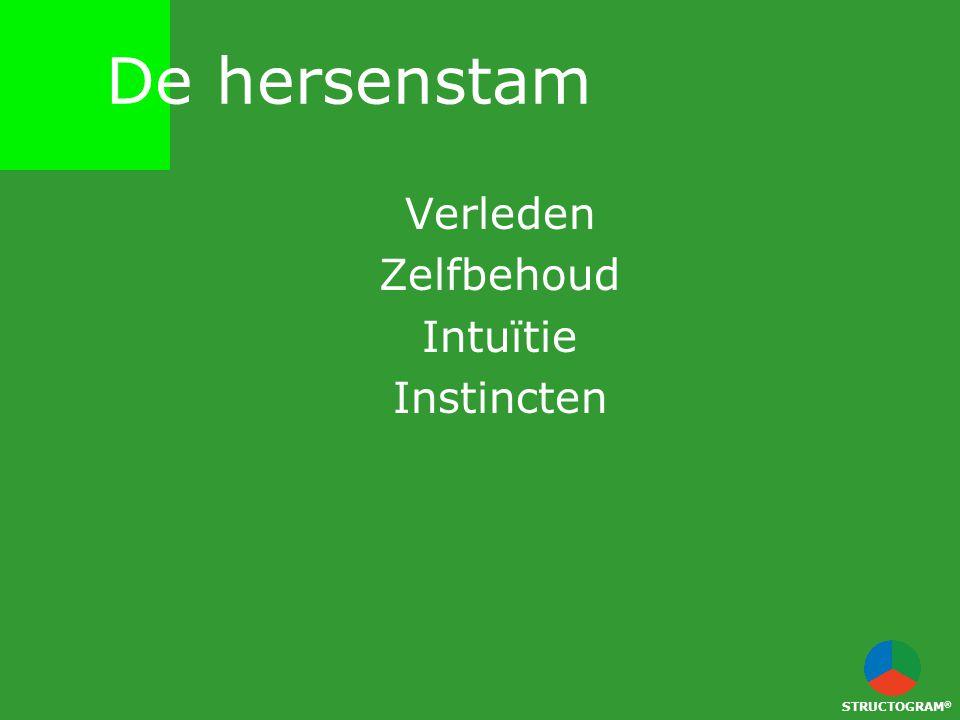 Verleden Zelfbehoud Intuïtie Instincten STRUCTOGRAM ® De hersenstam