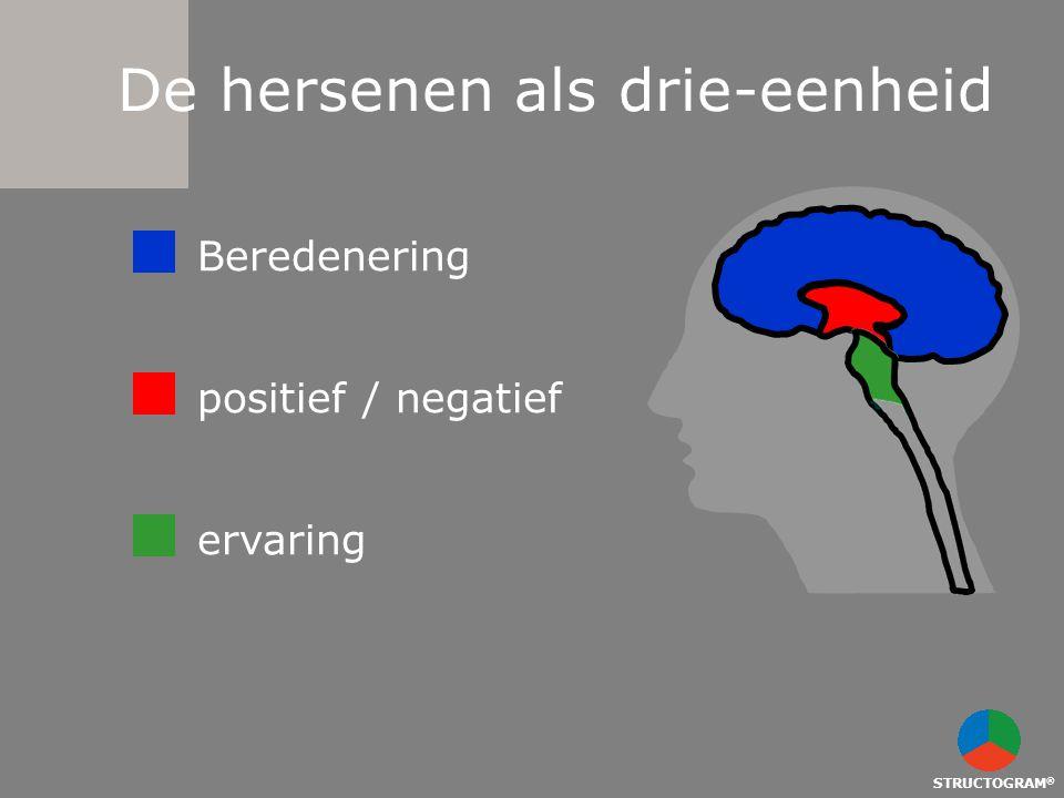 STRUCTOGRAM ® De hersenen als drie-eenheid Beredenering positief / negatief ervaring