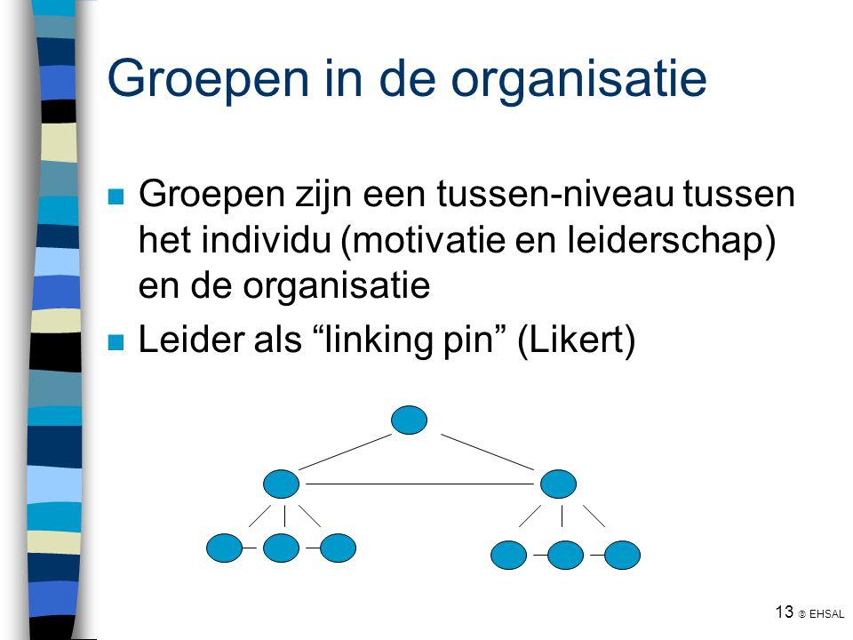 """13  EHSAL Groepen in de organisatie Groepen zijn een tussen-niveau tussen het individu (motivatie en leiderschap) en de organisatie Leider als """"linki"""