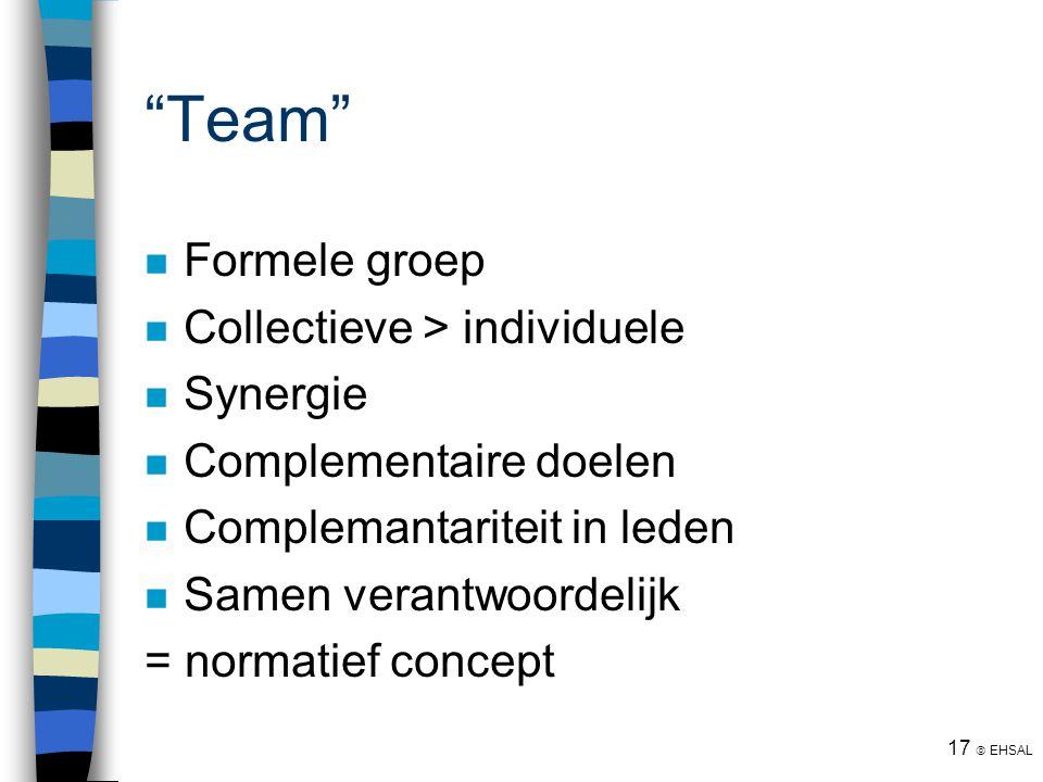 """17  EHSAL """"Team"""" Formele groep Collectieve > individuele Synergie Complementaire doelen Complemantariteit in leden Samen verantwoordelijk = normatief"""