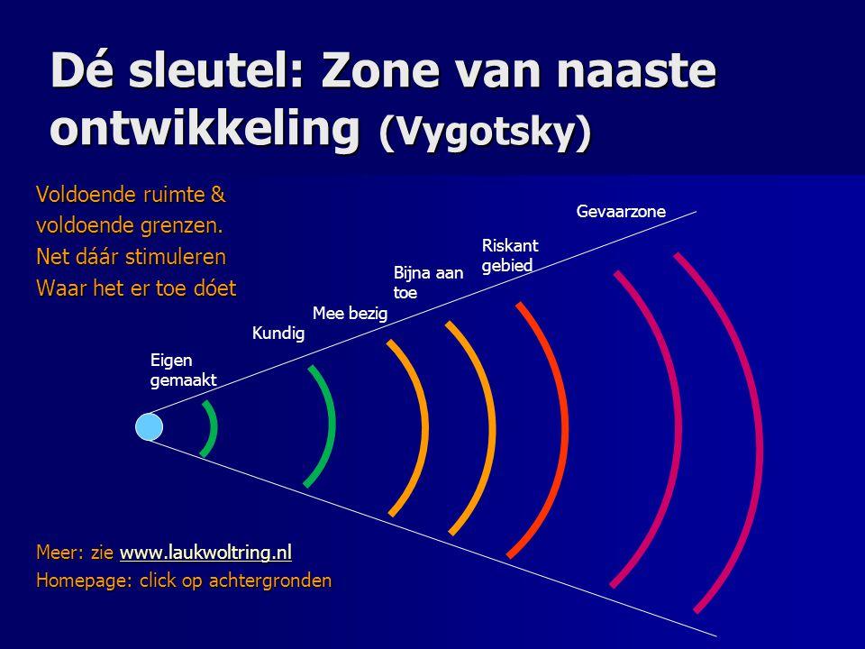 Dé sleutel: Zone van naaste ontwikkeling (Vygotsky) Voldoende ruimte ...