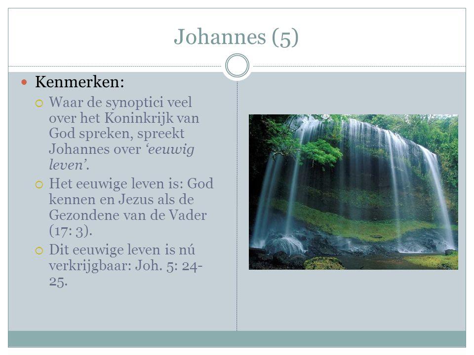 Johannes (5) Kenmerken:  Waar de synoptici veel over het Koninkrijk van God spreken, spreekt Johannes over 'eeuwig leven'.