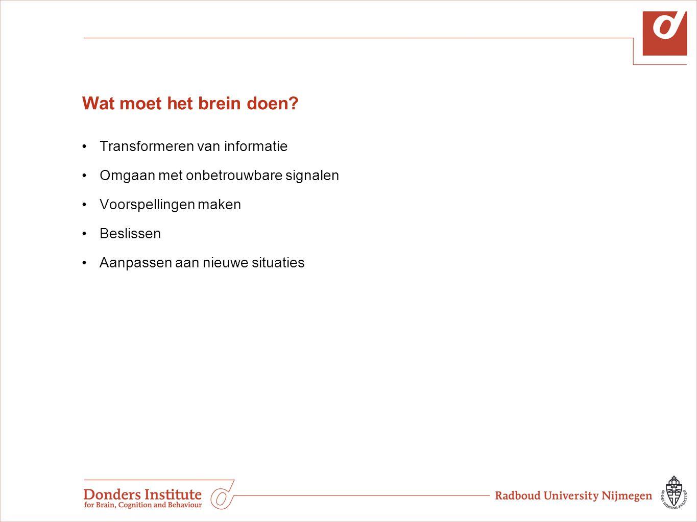 Wat moet het brein doen? Transformeren van informatie Omgaan met onbetrouwbare signalen Voorspellingen maken Beslissen Aanpassen aan nieuwe situaties