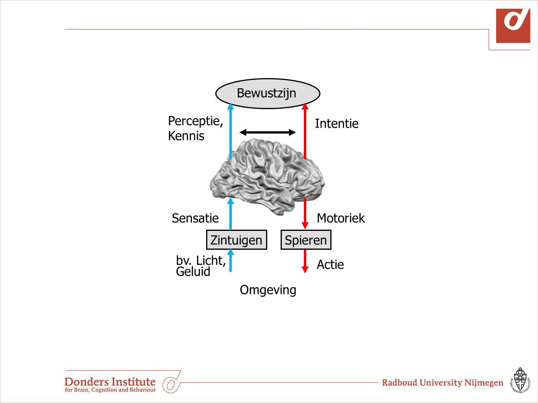 Computermodellen Theorie ontwikkeling Patienten Begrijpen pathologie Hersenen (EEG, MEG, fMRI, TMS) Begrijpen neurale mechanismen Gedrags- metingen Begrijpen gedrag, test van theorie Senso- Motorische Integratie