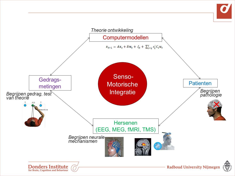 Computermodellen Theorie ontwikkeling Patienten Begrijpen pathologie Hersenen (EEG, MEG, fMRI, TMS) Begrijpen neurale mechanismen Gedrags- metingen Be