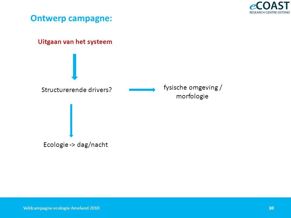 10Veldcampagne ecologie Ameland 2010 Ontwerp campagne: Uitgaan van het systeem Structurerende drivers.