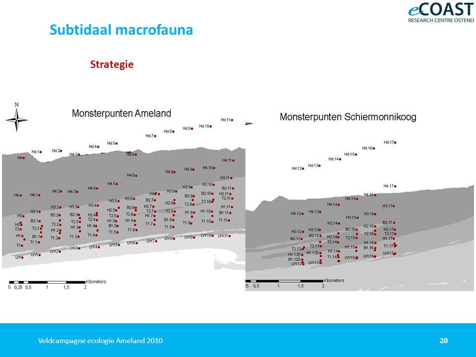 20Veldcampagne ecologie Ameland 2010 Strategie Subtidaal macrofauna
