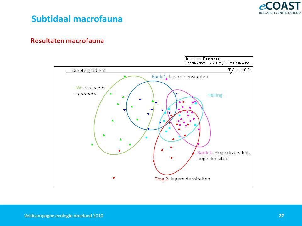 27Veldcampagne ecologie Ameland 2010 Resultaten macrofauna Subtidaal macrofauna