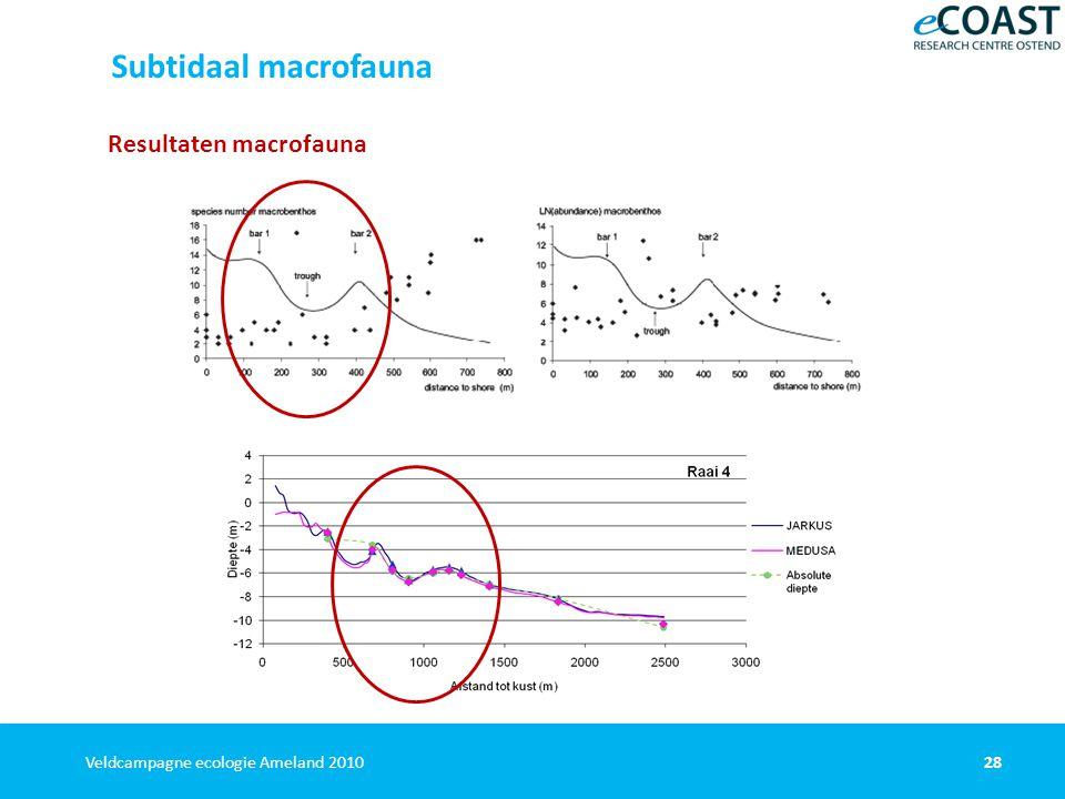 28Veldcampagne ecologie Ameland 2010 Resultaten macrofauna Subtidaal macrofauna Janssen et al.