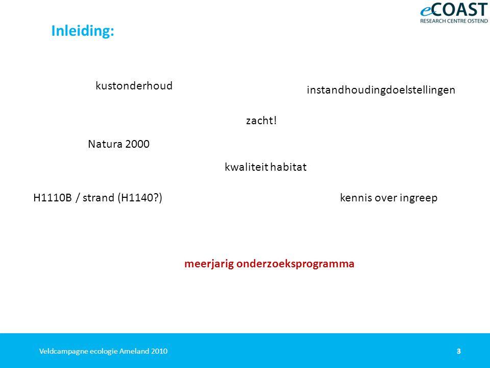 34Veldcampagne ecologie Ameland 2010 Resultaten demersale vis Demersale vis - kinderkamerfunctie Groot belang als kinderkamer; voor o.m.