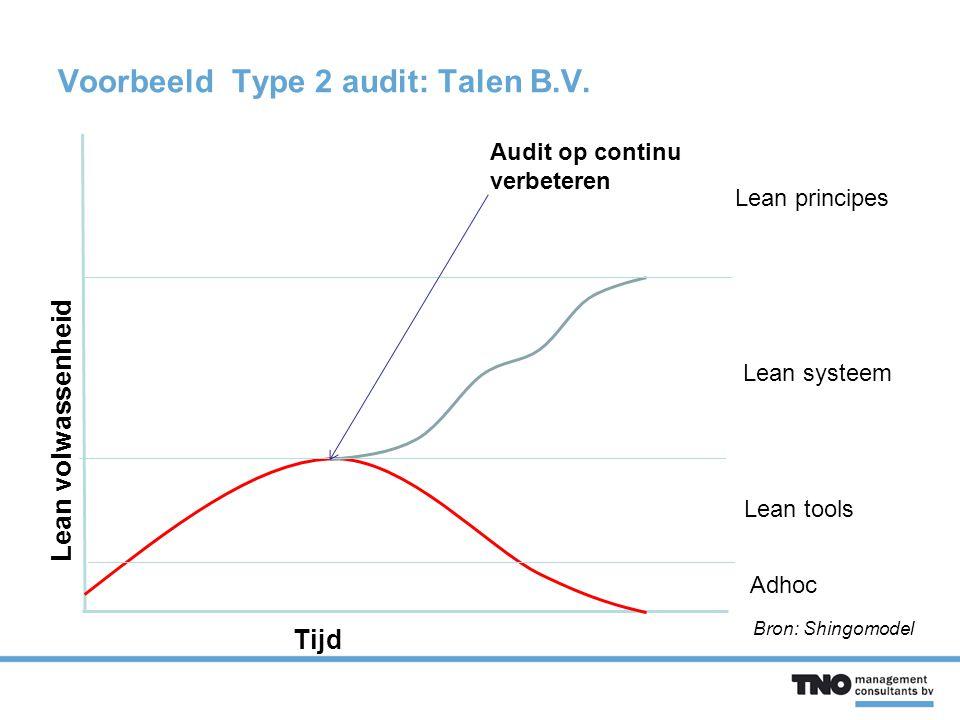 Voorbeeld Type 2 audit: Talen B.V.