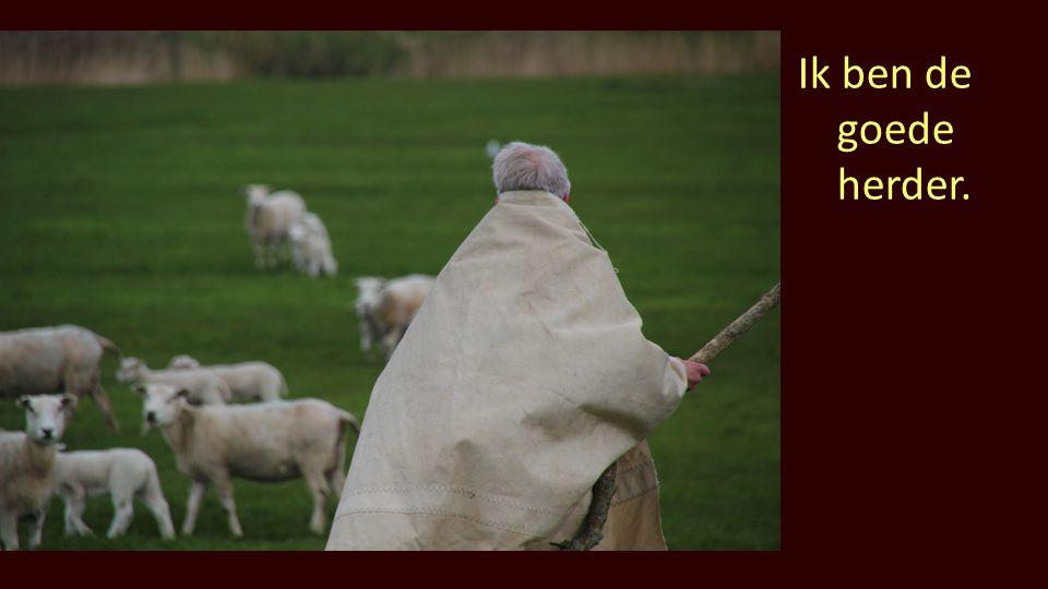 Ik ben de goede herder.