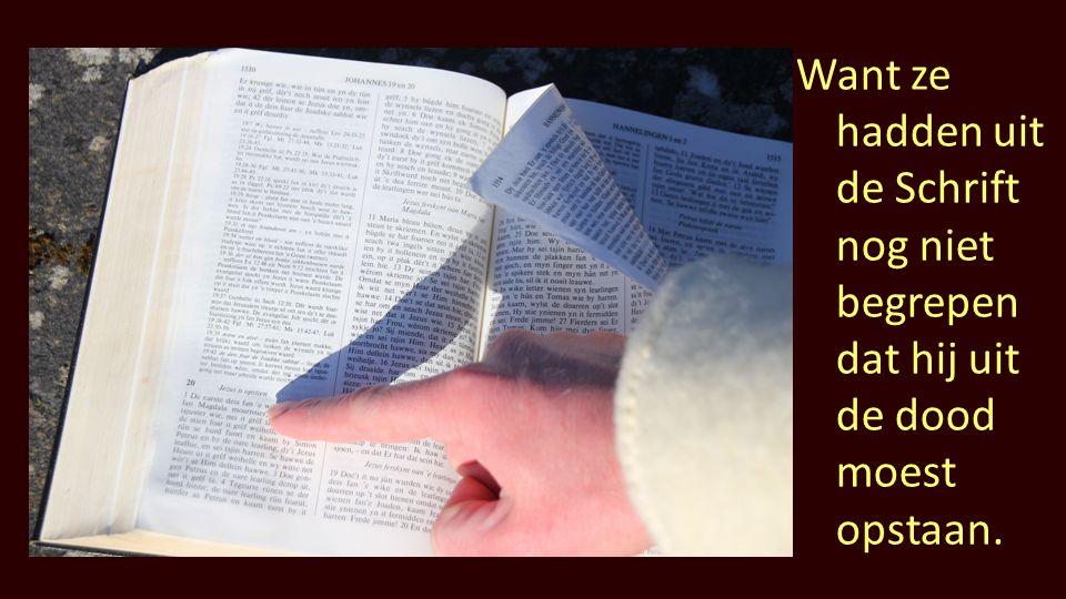 Want ze hadden uit de Schrift nog niet begrepen dat hij uit de dood moest opstaan.