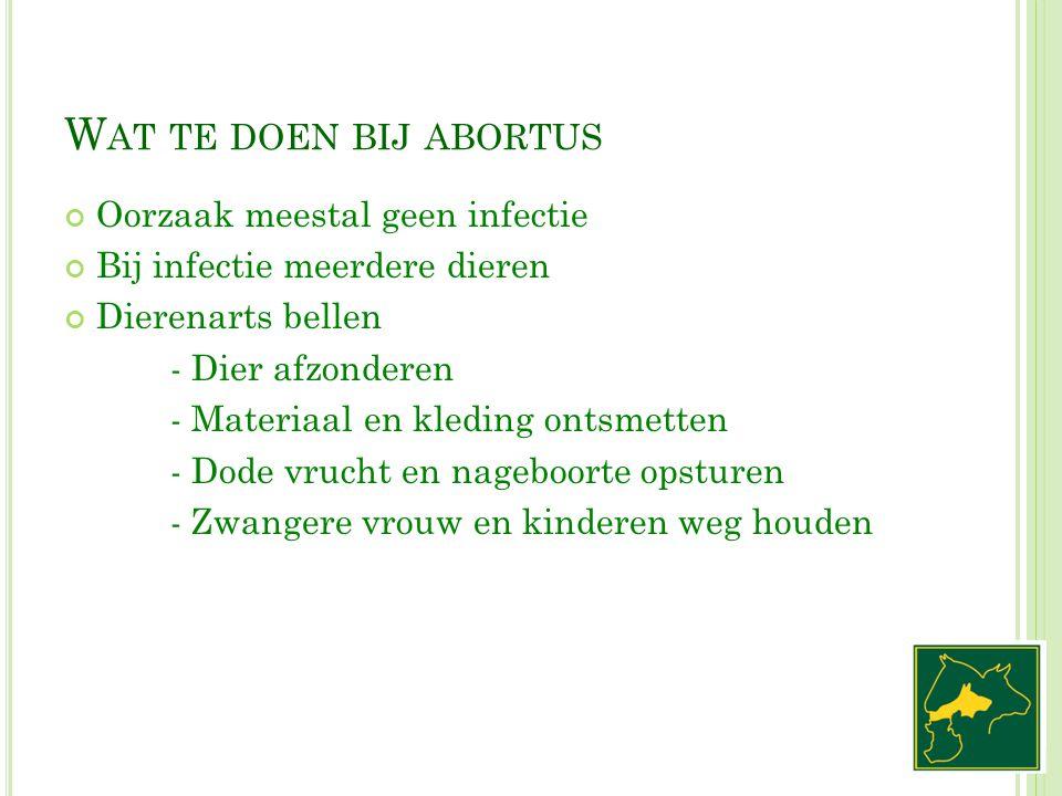 W AT TE DOEN BIJ ABORTUS Oorzaak meestal geen infectie Bij infectie meerdere dieren Dierenarts bellen - Dier afzonderen - Materiaal en kleding ontsmet
