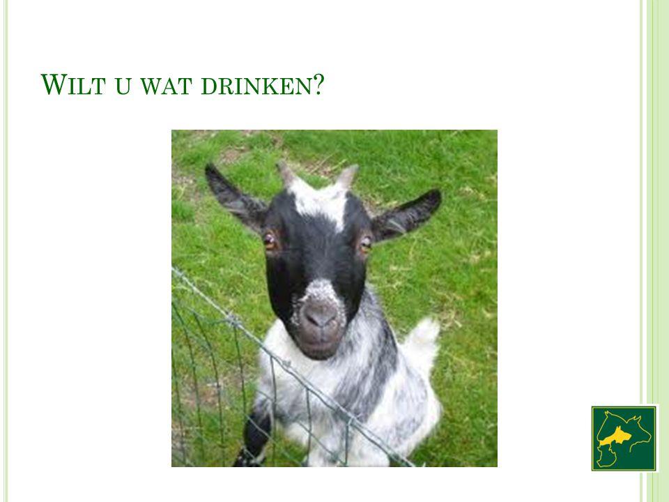 W ILT U WAT DRINKEN ?