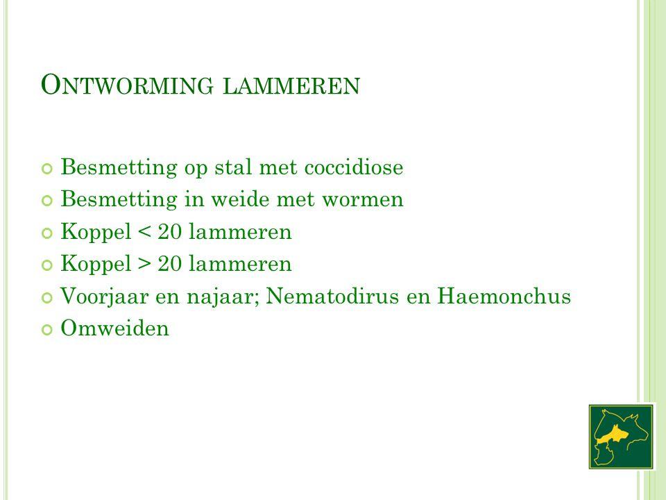 O NTWORMING LAMMEREN Besmetting op stal met coccidiose Besmetting in weide met wormen Koppel < 20 lammeren Koppel > 20 lammeren Voorjaar en najaar; Ne