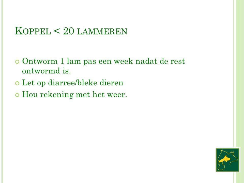 K OPPEL < 20 LAMMEREN Ontworm 1 lam pas een week nadat de rest ontwormd is. Let op diarree/bleke dieren Hou rekening met het weer.