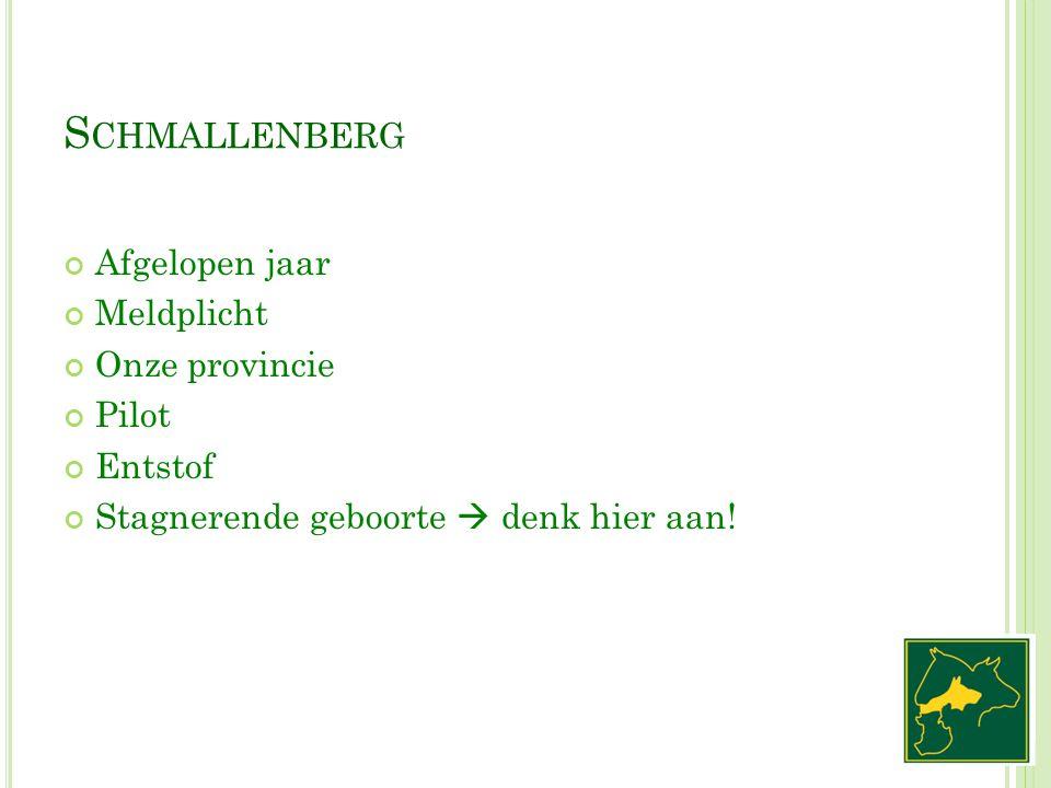 S CHMALLENBERG Afgelopen jaar Meldplicht Onze provincie Pilot Entstof Stagnerende geboorte  denk hier aan!