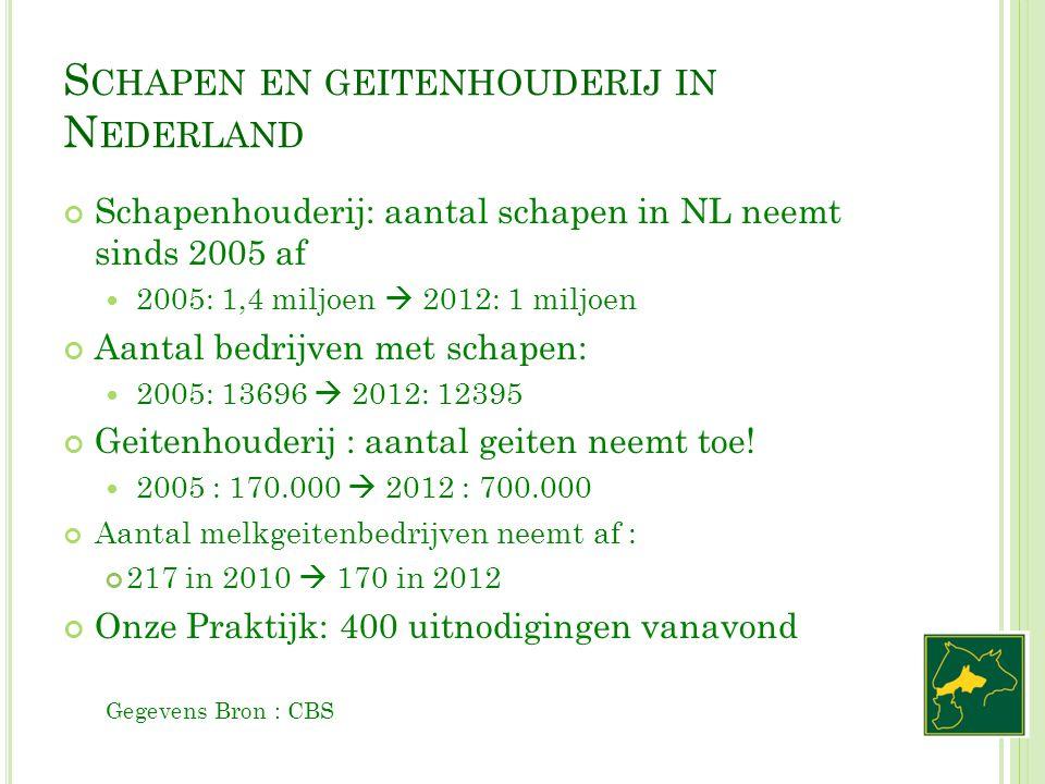 S CHAPEN EN GEITENHOUDERIJ IN N EDERLAND Schapenhouderij: aantal schapen in NL neemt sinds 2005 af 2005: 1,4 miljoen  2012: 1 miljoen Aantal bedrijve
