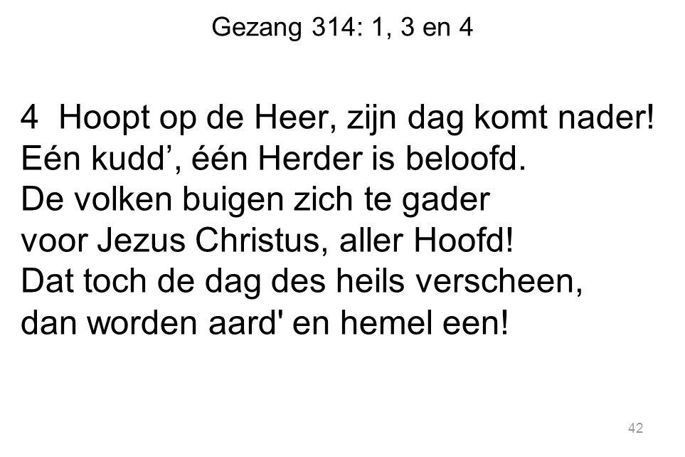 Gezang 314: 1, 3 en 4 4 Hoopt op de Heer, zijn dag komt nader! Eén kudd', één Herder is beloofd. De volken buigen zich te gader voor Jezus Christus, a