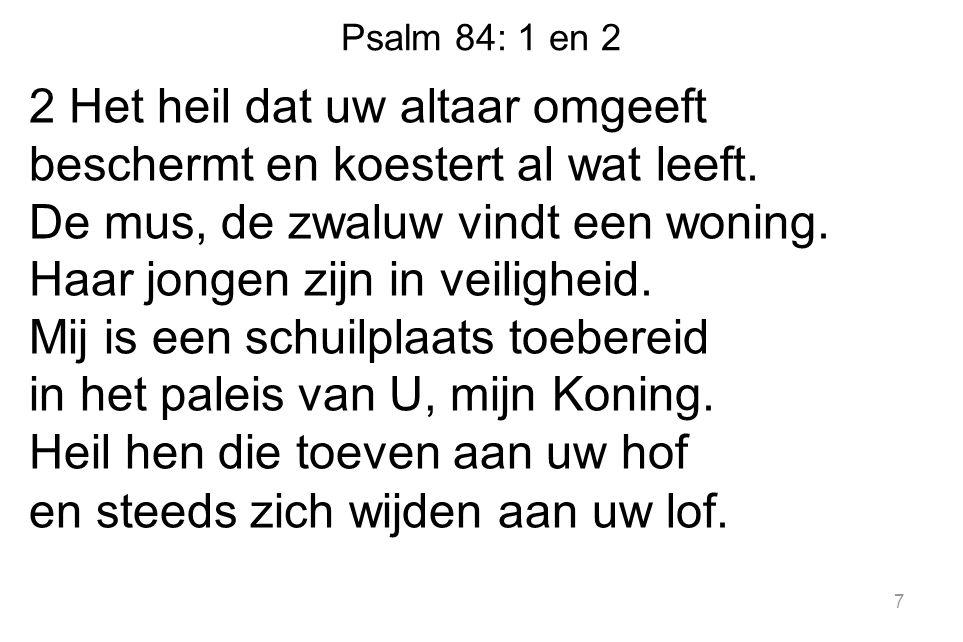 Psalm 84: 1 en 2 2 Het heil dat uw altaar omgeeft beschermt en koestert al wat leeft. De mus, de zwaluw vindt een woning. Haar jongen zijn in veilighe