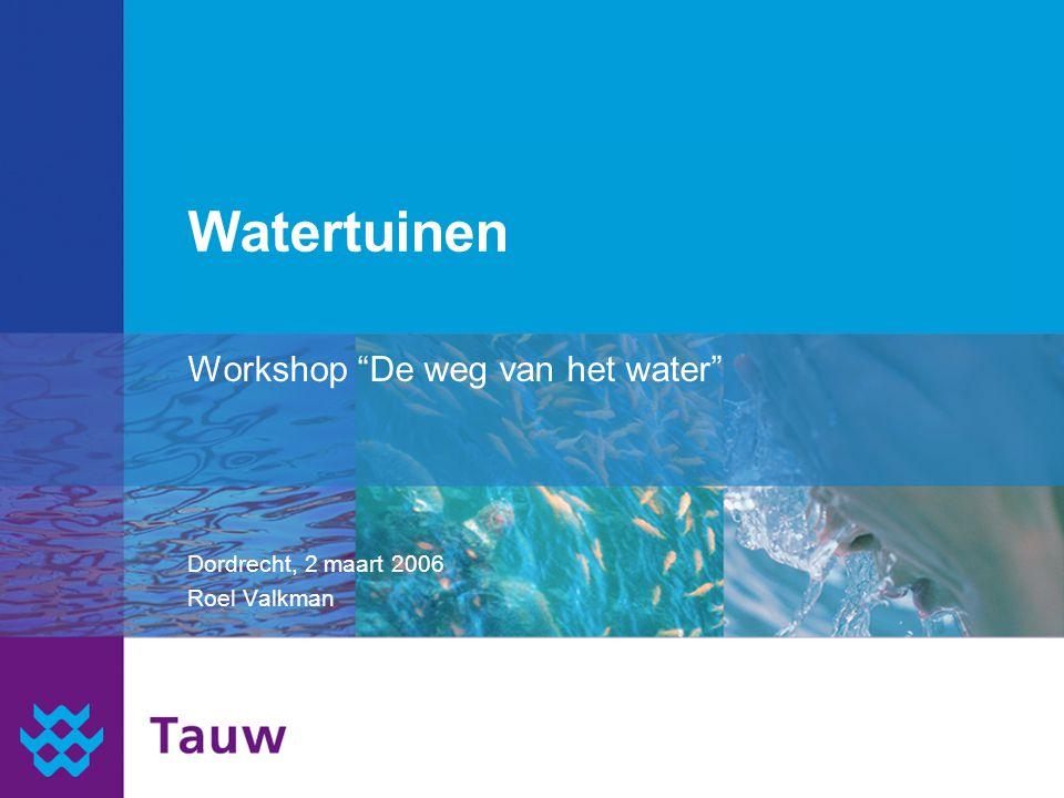 Watertuinen Workshop De weg van het water Dordrecht, 2 maart 2006 Roel Valkman