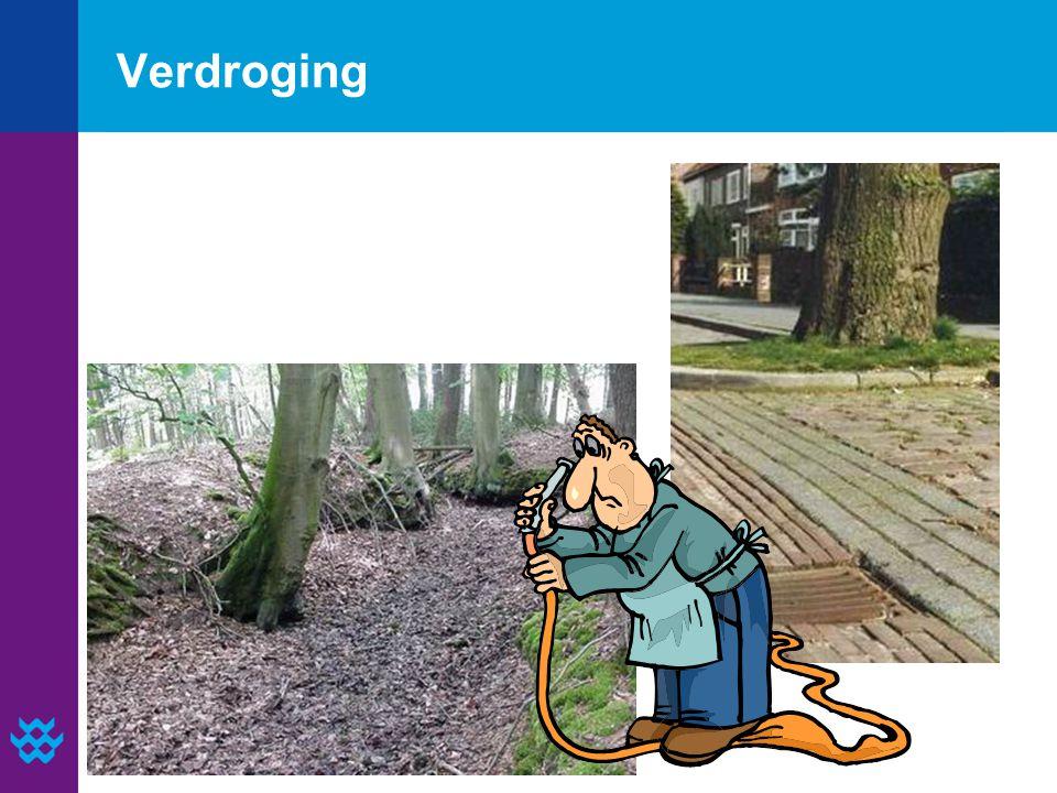 Verdroging
