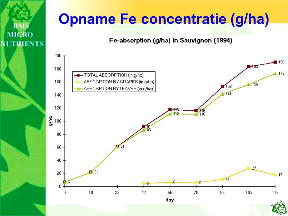 Opname Fe concentratie (g/ha)