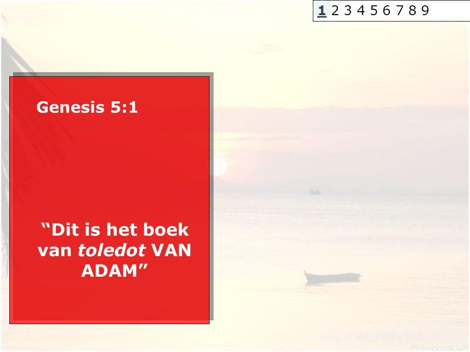 """Genesis 5:1 """"Dit is het boek van toledot VAN ADAM"""" 1 2 3 4 5 6 7 8 9"""